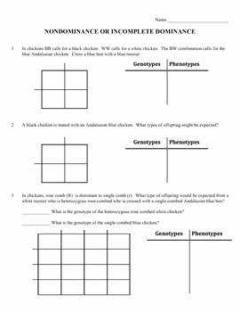 Genotypes and Phenotypes Worksheet Answers Beautiful Biology Squares and Factors On Pinterest