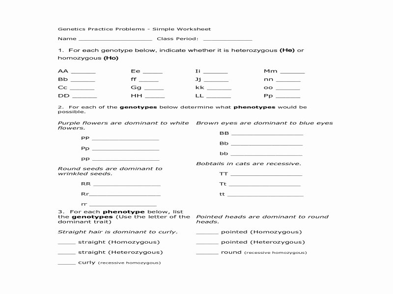 Genotypes and Phenotypes Worksheet Answers Beautiful Genotype and Phenotype Worksheet Answers Free Printable