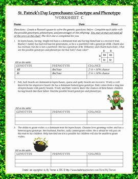 Genotypes and Phenotypes Worksheet Awesome St Patrick S Day Leprechaun Genotype and Phenotype