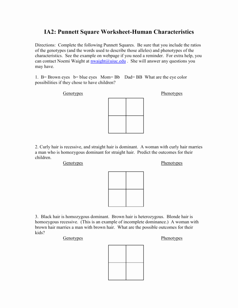 Genotypes and Phenotypes Worksheet Best Of Punnett Square Worksheet