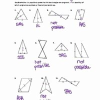Geometry Worksheet Congruent Triangles Answers Beautiful Graphing Absolute Value Equations Worksheet