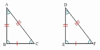 Geometry Worksheet Congruent Triangles Lovely Triangles and Congruence Worksheets