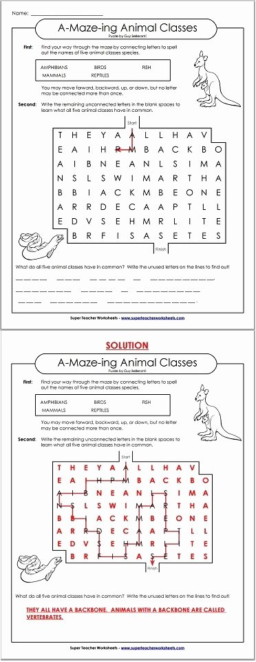 Get the Message Worksheet Answers Awesome Get the Message Math Worksheet Answer Key