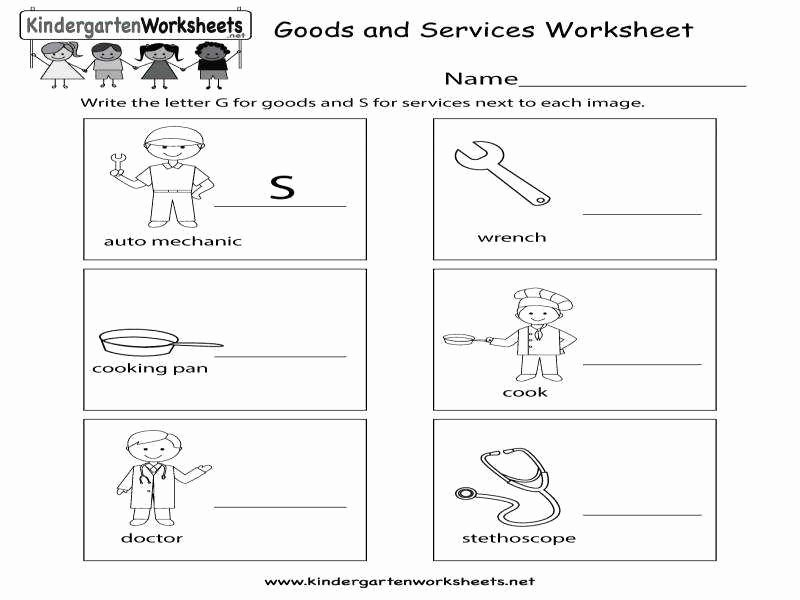 Goods and Services Worksheet Unique Goods and Services Worksheet