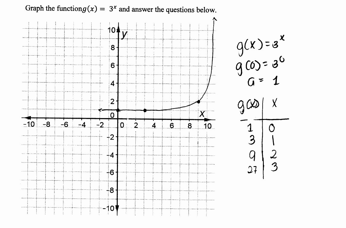 Graphs Of Functions Worksheet Lovely Graphing An Exponential Function
