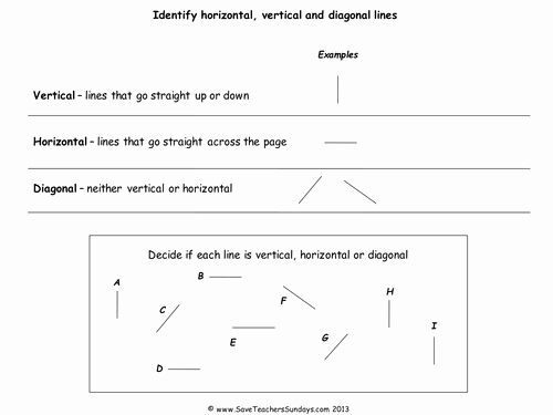 Horizontal and Vertical Lines Worksheet Lovely Horizontal and Vertical Lines Lesson Plan Powerpoint and