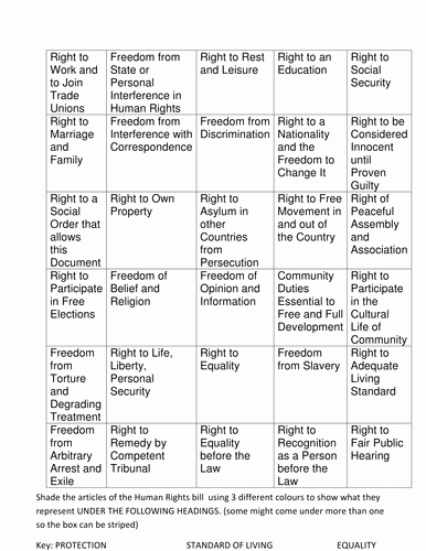 I Have Rights Worksheet Awesome Human Rights Powerpoint and Worksheet by Jooles2005