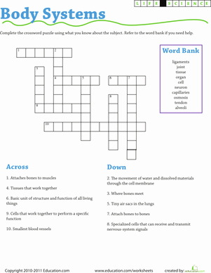 Incredible Human Machine Worksheet Beautiful Life Science Crossword Body Systems