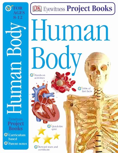 Incredible Human Machine Worksheet Luxury Eyewitness Human Body Project Book Scholastic Kids Club