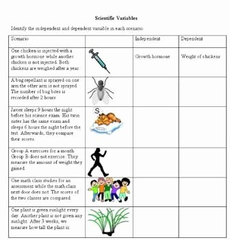 Independent and Dependent Variables Worksheet Unique Scientific Variables Tpt Science