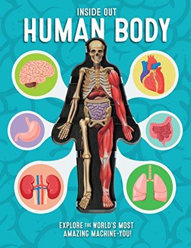 Inside the Living Body Worksheet Unique Preschool Human Body Printables