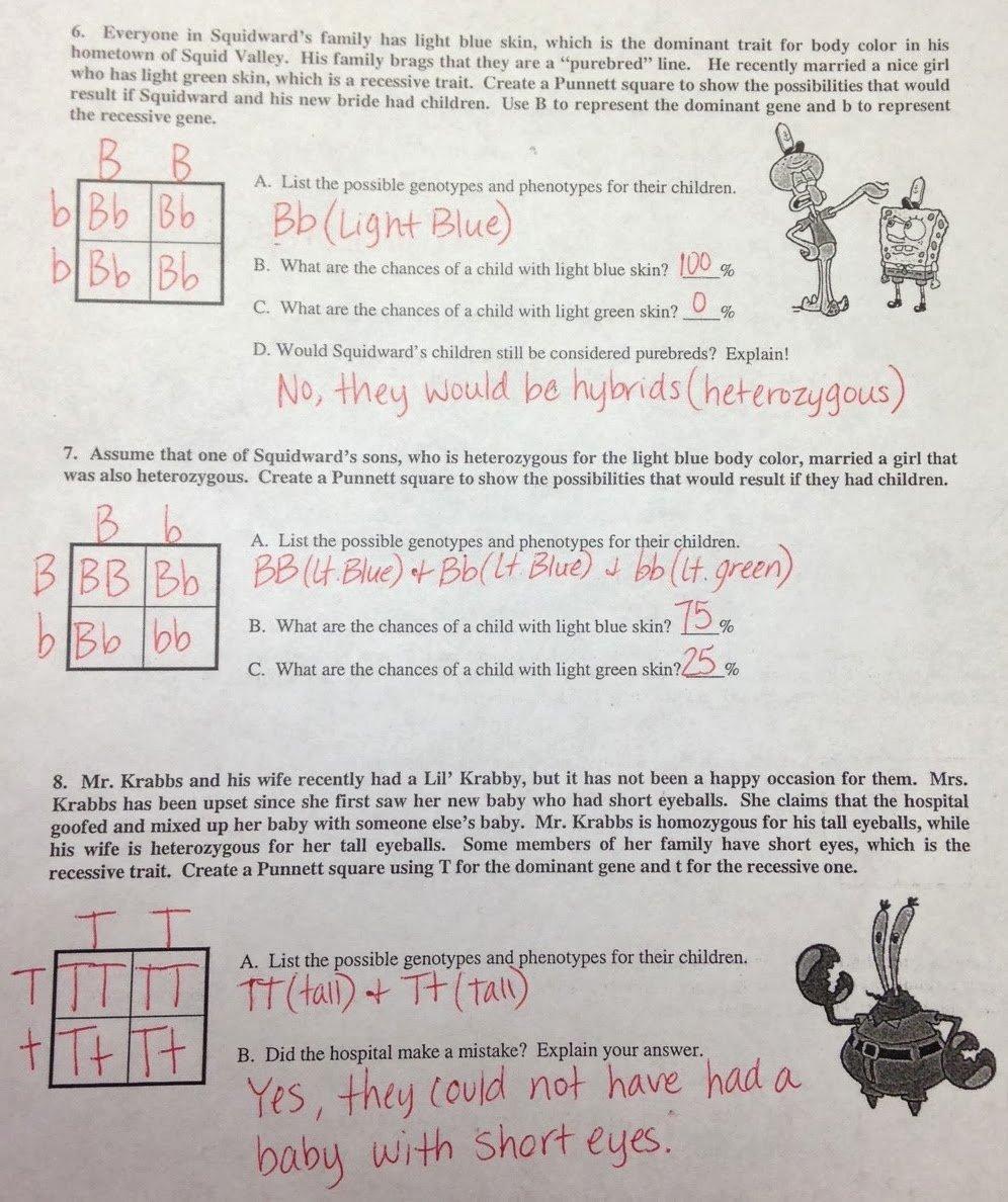 Inspired Educators Inc Worksheet Answers Fresh Punnett Square Worksheet Answers the Best Worksheets Image