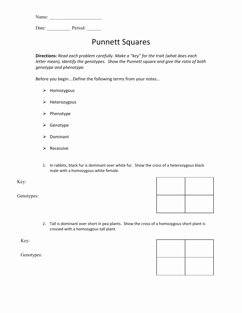 Inspired Educators Inc Worksheet Answers Inspirational Punnett Square Worksheet Answers the Best Worksheets Image
