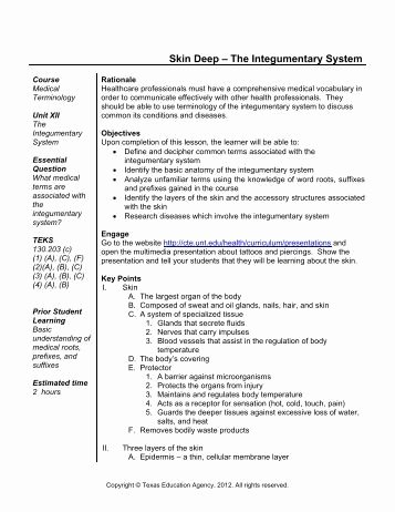 Integumentary System Worksheet Answers Beautiful Answers to Basic Structure Of the Skin Worksheet 1