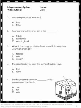 Integumentary System Worksheet Answers Inspirational Free Integumentary System Activity Human Body Systems