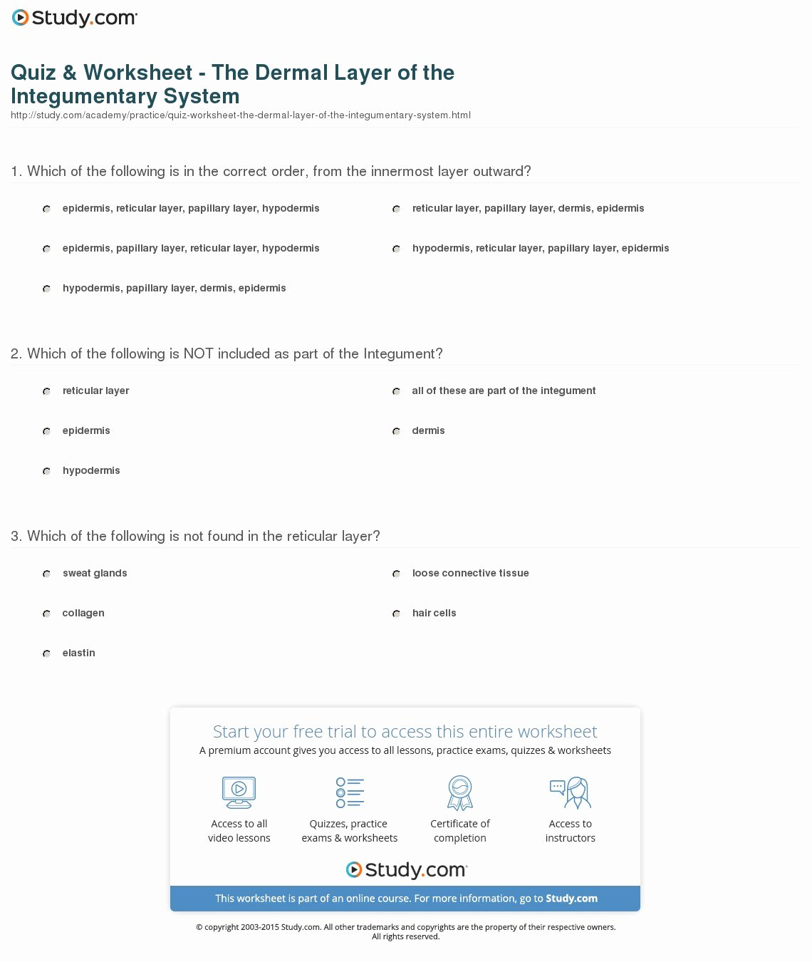 Integumentary System Worksheet Answers Inspirational Quiz & Worksheet the Dermal Layer Of the Integumentary