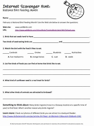 Internet Scavenger Hunt Worksheet Lovely Internet Scavenger Hunt Bird Feeding Month