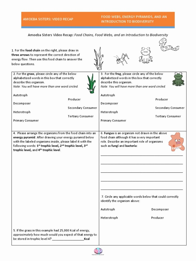 Introduction to Energy Worksheet Answers Awesome Worksheet Food Web Worksheet Answers Grass Fedjp