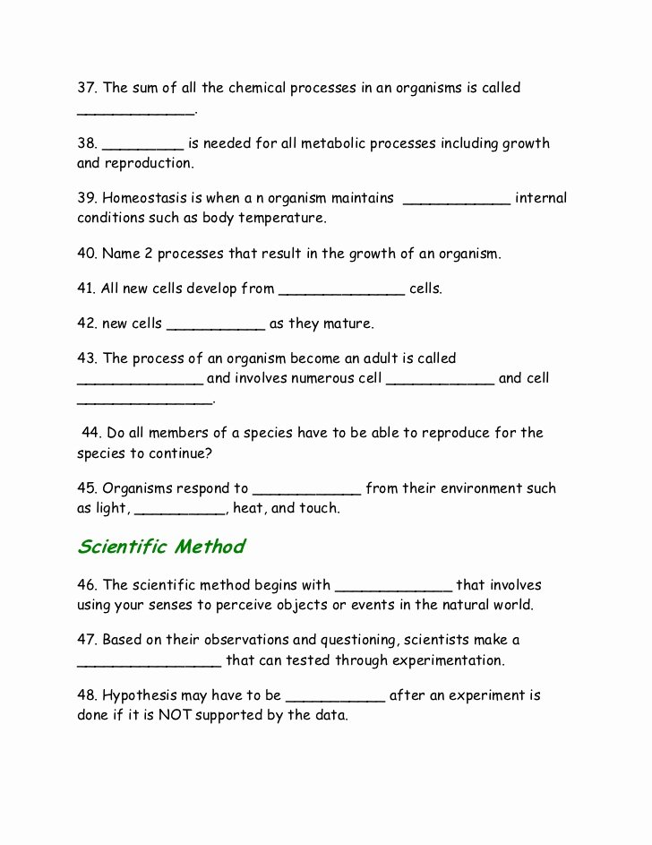 Introduction to Energy Worksheet Answers New Cell Energy Worksheet Biology Breadandhearth
