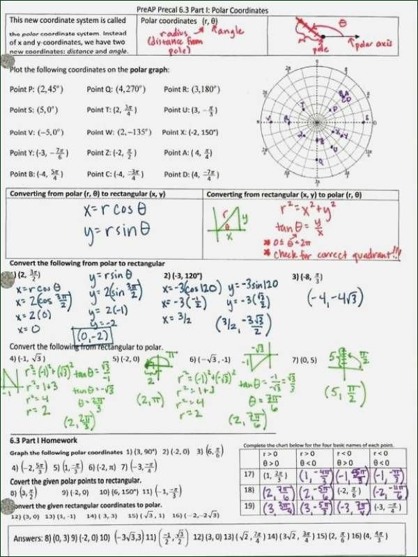 Inverse Functions Worksheet with Answers Lovely Precalculus Inverse Functions Worksheet Answers