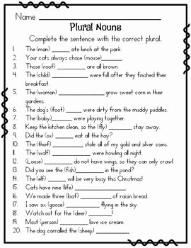 Irregular Plural Nouns Worksheet Best Of Irregular Plural Nouns