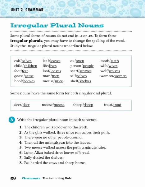 Irregular Plural Nouns Worksheet Best Of Unit 2 Grammar Irregular Plural Nouns Worksheet for 3rd