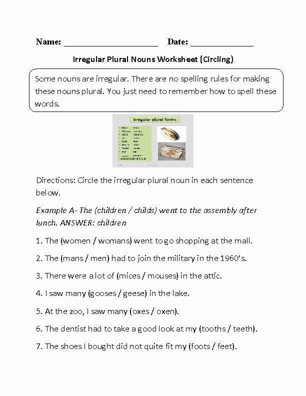 Irregular Plural Nouns Worksheet Inspirational Best 25 Irregular Plural Nouns Worksheet Ideas On