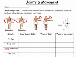 Joints and Movement Worksheet Elegant Ks3 Fitness Scheme Pack 14 Lessons Worksheets by
