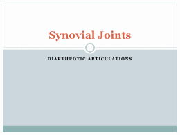 Joints and Movement Worksheet Fresh Joints & Movement Worksheet