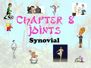 Joints and Movement Worksheet Inspirational Joints & Movement Worksheet