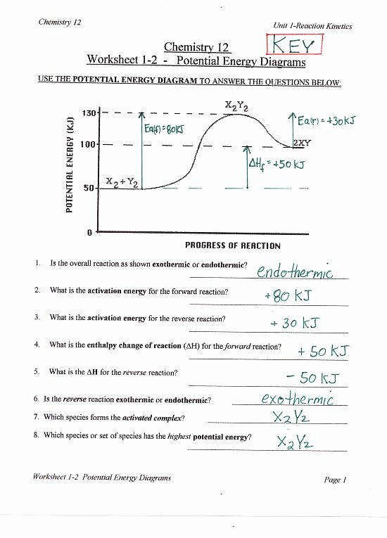 Kinetic and Potential Energy Worksheet Luxury Potential and Kinetic Energy Worksheet