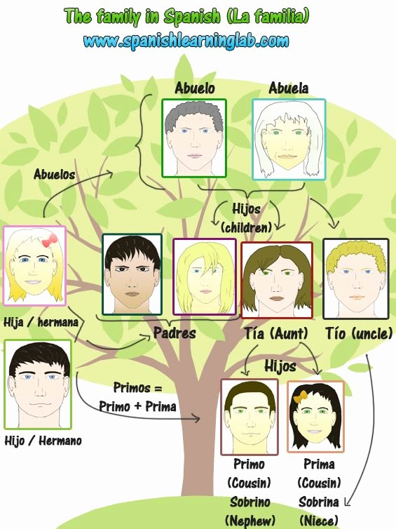 La Familia Worksheet In Spanish Luxury 82 Best Images About La Familia On Pinterest