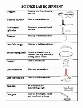 Lab Equipment Worksheet Answer Inspirational Lab Equipment Worksheet the Best Worksheets Image