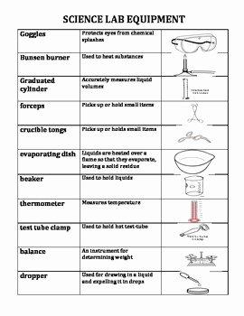 Lab Equipment Worksheet Answer Inspirational Lab Equipment Worksheet the Best Worksheets Image