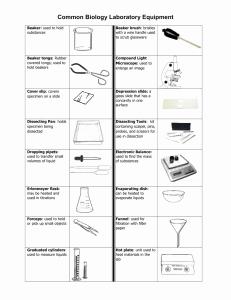 Lab Equipment Worksheet Answer Unique Studylib Essys Homework Help Flashcards Research