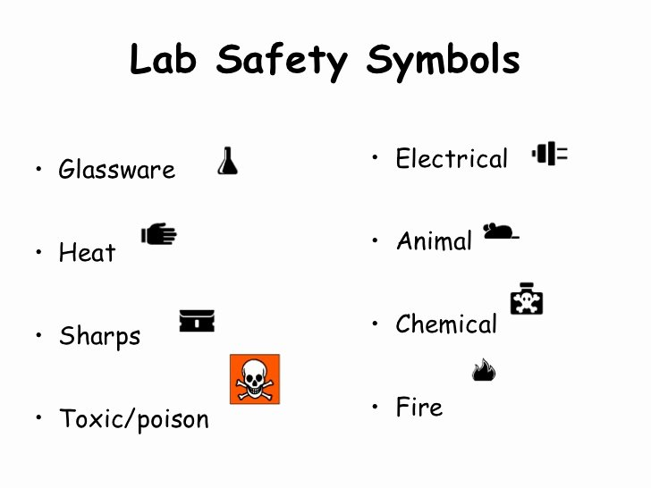 Lab Safety Symbols Worksheet Awesome Biology Lab Safety