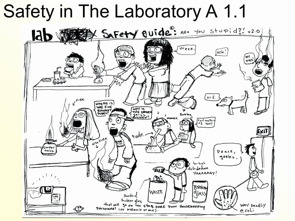 Lab Safety Worksheet Answer Key Fresh Lab Safety Symbols Worksheet Answer Key