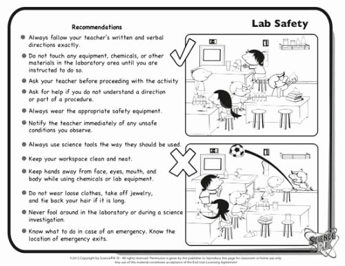 Lab Safety Worksheet Answers Inspirational Science Printables and Worksheets Pletely