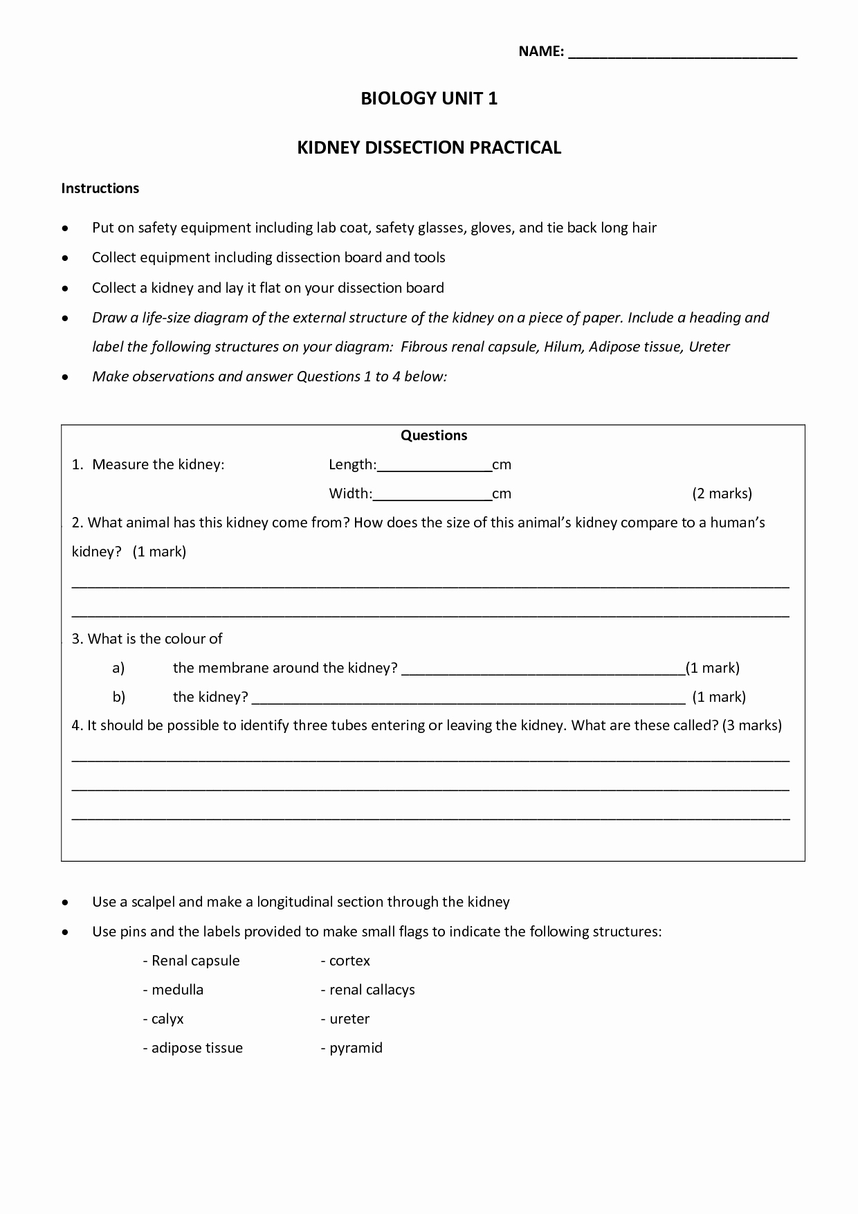Lab Safety Worksheet Answers Lovely Lab Equipment Worksheet Answers
