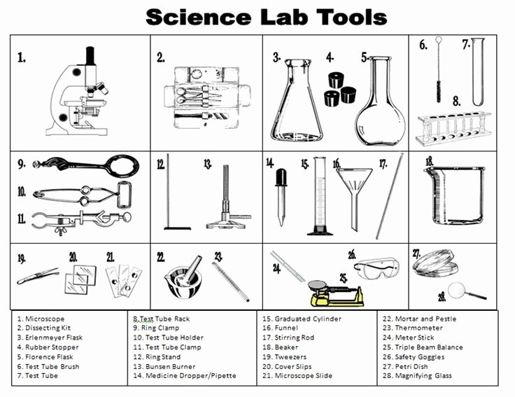 Lab Safety Worksheet Answers Unique Lab Safety Worksheet Answer Key