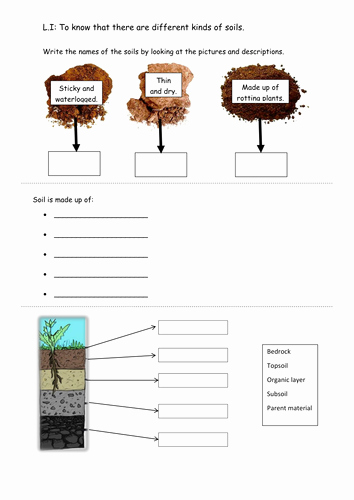 Layers Of soil Worksheet Beautiful soils Worksheet by Rachdf