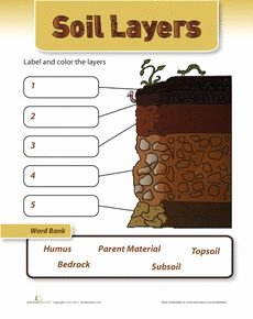 Layers Of soil Worksheet Fresh 57 Best Images About 3rd Grade Sci soil On Pinterest