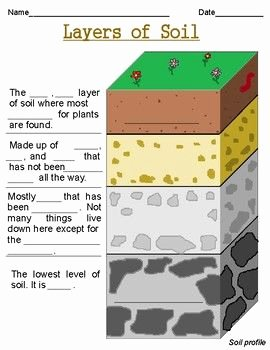 Layers Of soil Worksheet Lovely Layers Of soil Worksheets