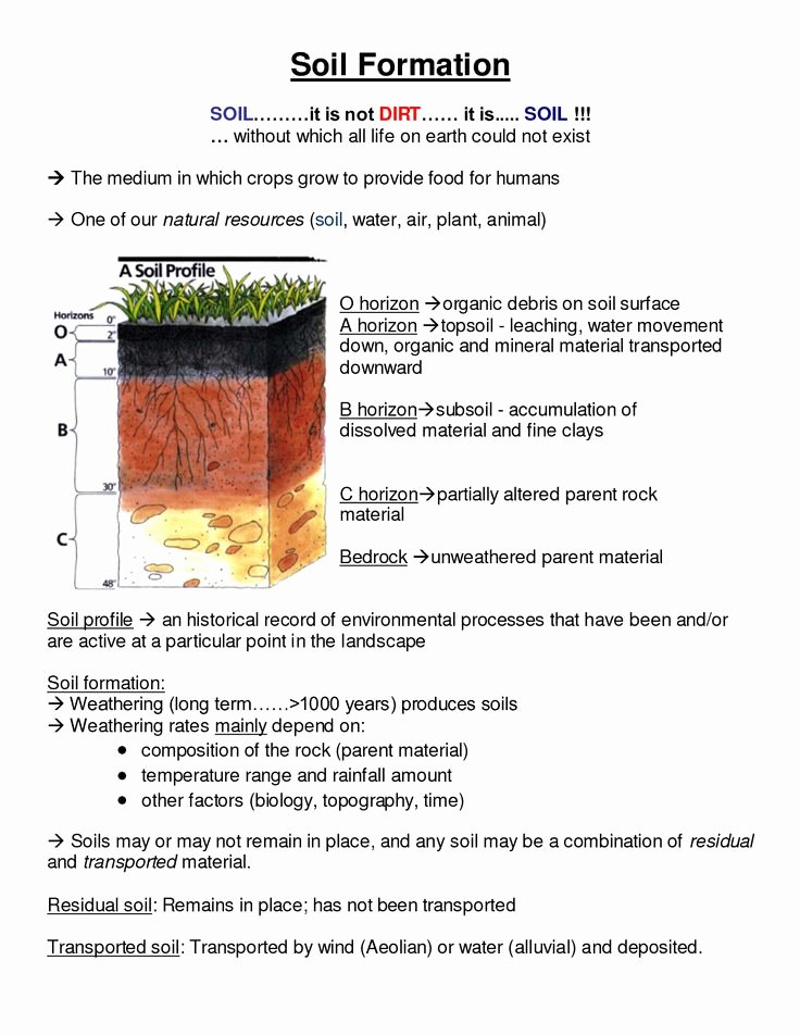 Layers Of soil Worksheet Lovely soil Profile Worksheet Projects to Try