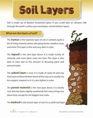 Layers Of soil Worksheet Luxury 17 Best Ideas About Second Grade Science On Pinterest