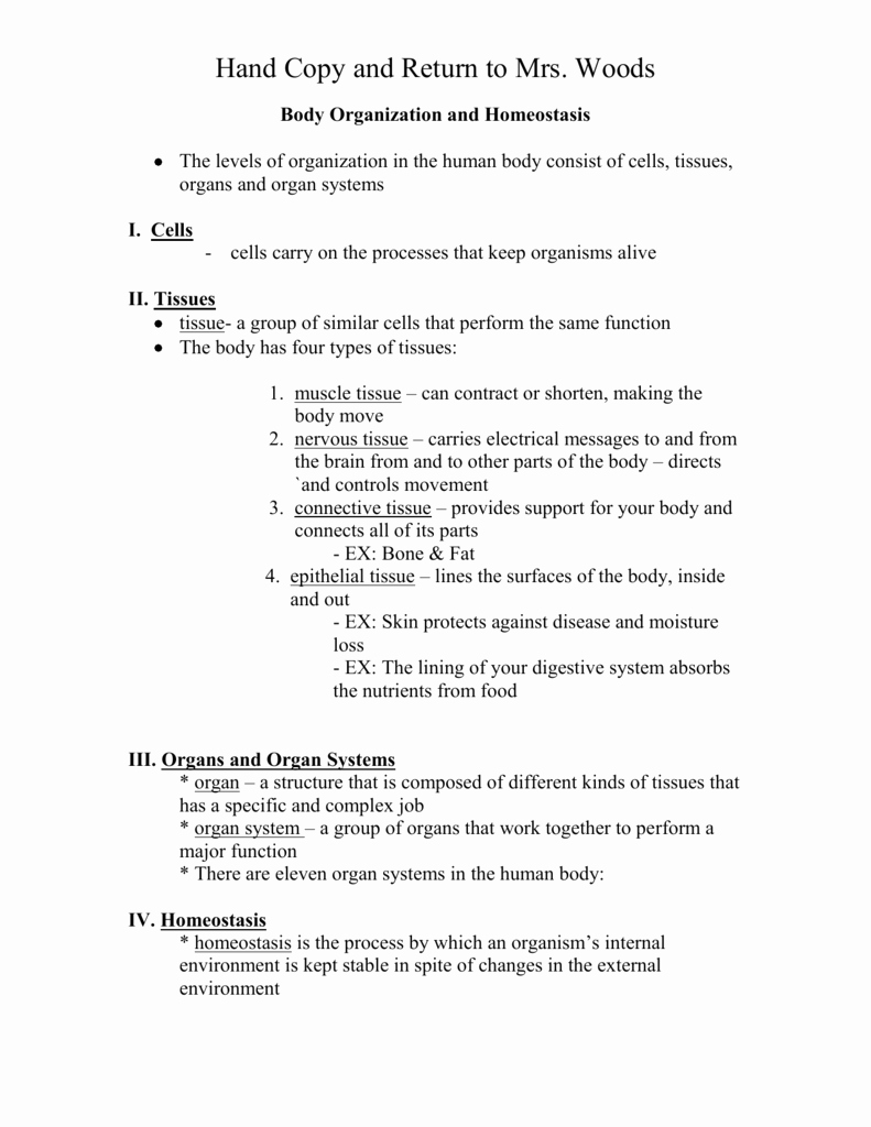 Level Of organization Worksheet Beautiful Worksheet Levels organization Worksheet Grass Fedjp