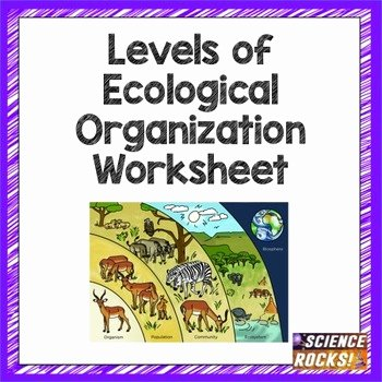 Level Of organization Worksheet Fresh Levels Of Ecological organization Worksheet by Science