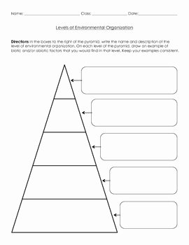 Life Science Levels of Environmental Organization Worksheet