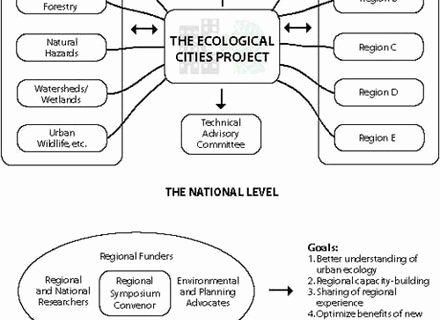 Levels Of Ecological organization Worksheet Best Of 57 Levels organization Worksheet Levels