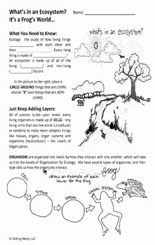 Levels Of Ecological organization Worksheet Elegant Ecosystem Levels Of organization by Getting Nerdy with Mel